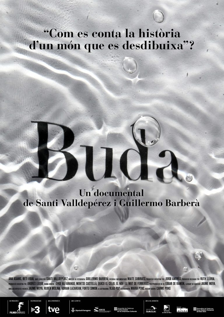 Buda, the island of the Delta (interactive project) 1